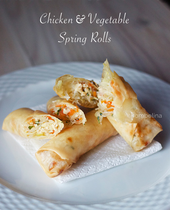 Chicken & Vegetable Spring Rolls